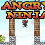 Angry Ninja